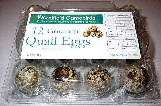 Woodfield Gamebirds quail eggs  Quail Bird Eggs Benefits
